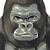 グレゴリー・ライネス(どこから見たって立派なゴリラ・d26911)