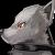 ルル・フェンリル(孤独な灰狼・d28896)